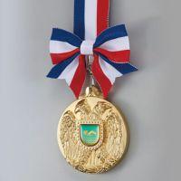 V-TOPワシメダル WIN-LFW-80