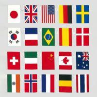 新・万国旗テトロン 連続紐付全長12.5m20カ国
