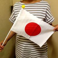 応援国旗セット・ポール2本継ぎ付 20×30cm(テトロン日の丸) TOS-KOKKI-496001